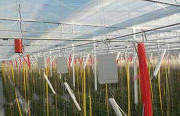 Wireless Value utiliza sensores Zemic en miniatura para la medición del peso de frutas y verduras